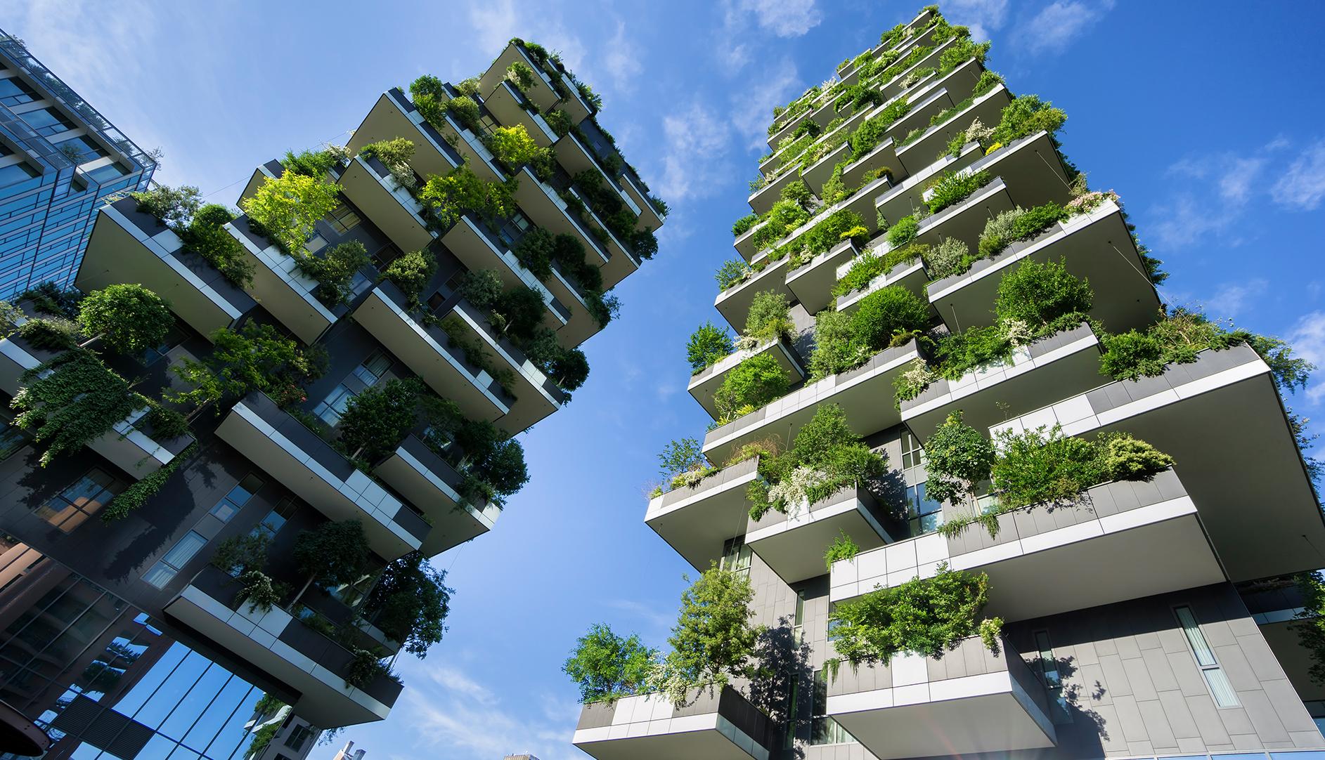 Immeuble murs végétaux