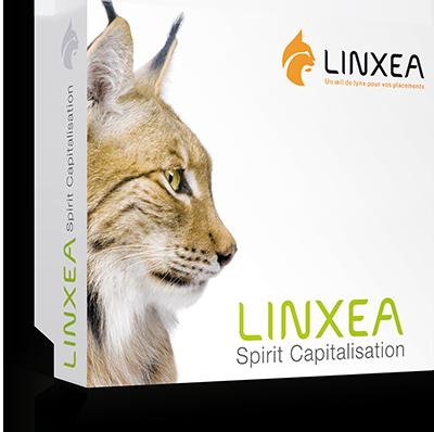 LINXEA Spirit Capitalisation