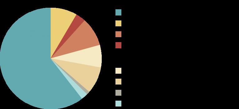 Composition Actif Général Suravenir